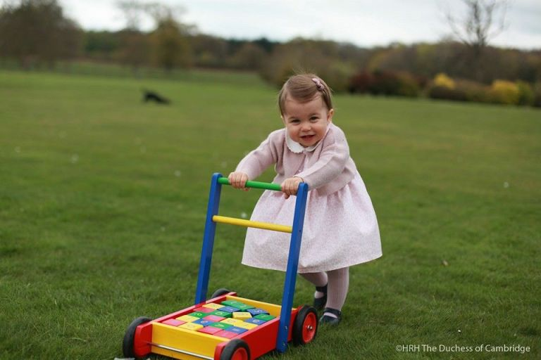 gallery-1462097690-princess-charlotte-birthday-pictures4